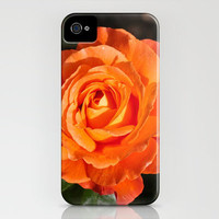 Orange Rose 6 iPhone Case by Steve Purnell   Society6