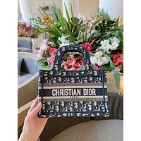 DIOR Mini Book Tote Bag