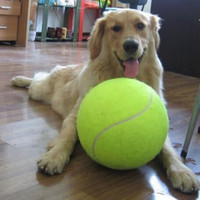 24CM Giant Tennis Ball For Pet Chew Toy Big Inflatable Tennis Ball Signature Mega Jumbo Pet Toy Ball Supplies Outdoor toys