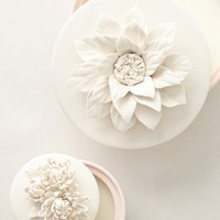 Lulu Candle by Anthropologie Pink Coconut & Sea Salt Candles