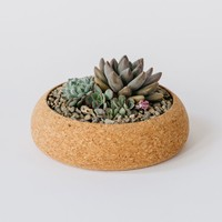 Melanie Abrantes — Large Cork Planter