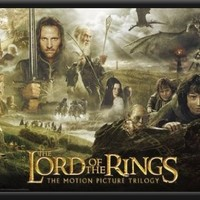 Lord of the Rings Trilogy Movie 34x22 Dry Mounted Poster Wood Framed