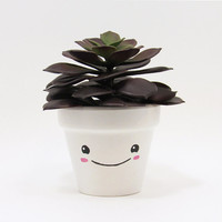 Succulent Planter, Succulent Pot, Cute Face Planter, Plant Pot, Air Plant Holder, Flower Pot, Indoor Planter, Kawaii Planter, Pink Planter