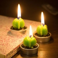 Cactus Plants Mini Candles Mini 6 pcs Set