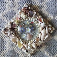 Vintage Seashell Framed Dried Flower in Bubble Glass Wall Hanging 1960s
