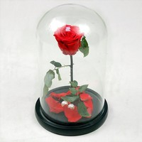 Rose glass cover [9571268557]