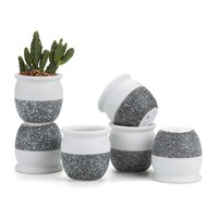 6PC Mini Glazed Ceramic Succulent Planters SET