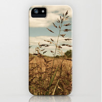 iPhone4 4S or iPhone 5 Hard Case - Photography Cell Phone Cover - Grass of the Field - Nature - Rural - Botanical - Farming - Heartland