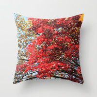 Fall maple trees of red leaves, in blue sky.  nature landscape photography. Throw Pillow by NatureMatters