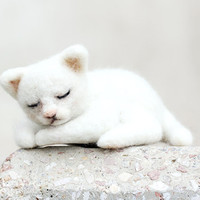 Sleeping white kitty, wool kitty toy, christmas toy gift for kids and babies
