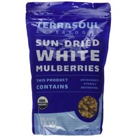 Terrasoul Superfoods Sun-dried White Mulberries (Organic), 16-ounce - Walmart.com