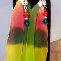 Beautiful Parrot Feather Earrings