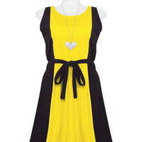 Navy Blue and Yellow Two-Tone Dress