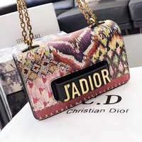 DIOR casual ladies shoulder bag hot seller with a shopping bag in contrasting colors and prints