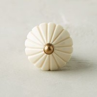 Clustered Fan Knob by Anthropologie in Ivory Size: One Size Knobs