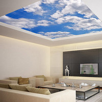 Ceiling STICKER MURAL sky clouds cupola dome airly air decole poster 650x260 / from Pulaton