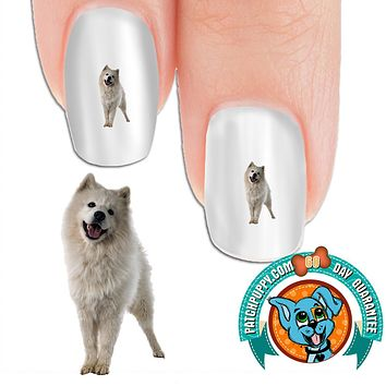 Samoyed I'm innocent Nail Art (NOW 50% MORE FREE)