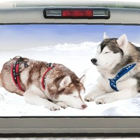 Alaskan Huskies in Snow- 17 Inches-by-56- Inches Compact Pickup Truck- Rear Window Graphics