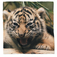 New Bandana for young adults, parents, and you  (young Tiger