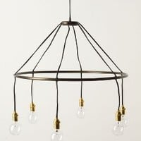 Halo Chandelier by Anthropologie in Black Size: One Size Lighting