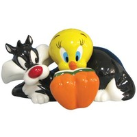 Westland Giftware Looney Tunes Magnetic Tweety and Sylvester Salt and Pepper Shaker Set, 3-Inch