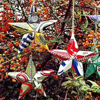 The Sports Stars Ornament Collection - Vintage PBR Pabst Blue Ribbon Wisconsin Badgers Rose Bowl Champions 1994 Beer Can Star