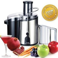 Heaven Fresh NaturoPure 750W Powerful Stainless Steel Deluxe Juicer - HF3022