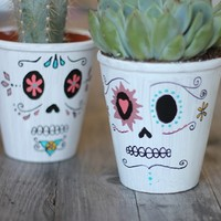 DIY Day Of The Dead Planters - Free People Blog