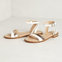 Maximoff Sandals by Seychelles White