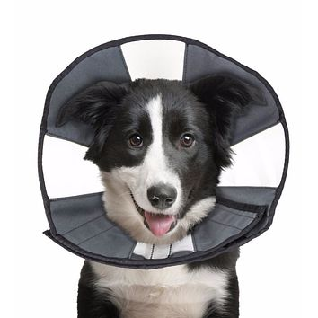 ZenPet ProCone Pet E-Collar for Dogs and Cats- Large