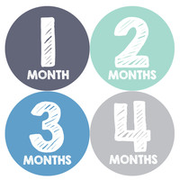 Baby Boy Monthly Milestone Stickers Style #015