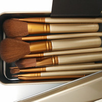 12 pcs Professional makeup brushes