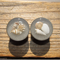 Seashell Beach Plugs - 5/8, 16mm