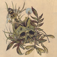 Skull with Weeds. Art Print by Mister Beaudry