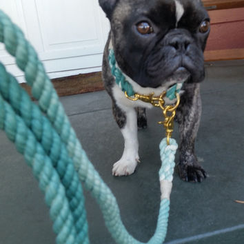Teal Ombré Rope Dog Leash