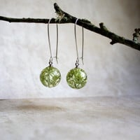 Real Moss Earrings. Unique Resin Sphere Orb Globe Earrings. Lichen. Nature. Forest.