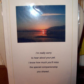 I'm Really Sorry to Hear About Your Pet Sympathy Card