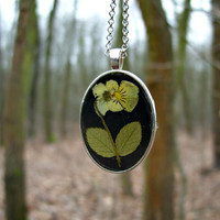 Real flower necklace - Field pansy flower - Pressed flower jewelry - Botanical jewelry - Nature inspired pendant - Dried yellow flower