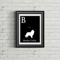 Alphabet Art Print - dog art print - B is for Border Collie Art Print - Modern Home Decor - dog silhouette art print