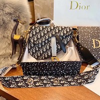 DIOR Oblique Saddle Bag