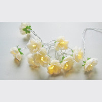 Vintage Champagne French Roses Fairy lights