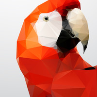 Geo - Parrot red Art Print by Three of the Possessed