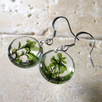 Rhizomnium glabrescens earrings, Moss earring, plant jewelry, leaf jewellery, bryophyte, woodland, nature