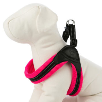 Top Paw® Easy Fit Comfort Harness | Harnesses | PetSmart