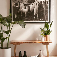 Victoria Aguirre Llamas Family Art Print | Urban Outfitters