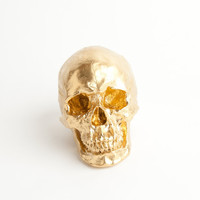 The Fitz - Gold Faux Human Head - Resin Skeleton- Sugar Skull Like