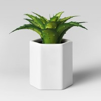Artificial Small Aloe Plant with White Pot - Project 62™