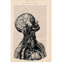 scary halloween decorations vintage book anatomy SKELETON & muscle bust print - vintage dictionary page print - halloween decor