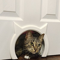 The Kitty Pass Interior Cat Door Hidden Litter Box Pet Door for cats up to 21 lbs