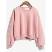 Crew Neck Crop Sweatshirt